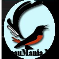 kicaumania logo
