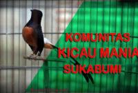 Kicau Mania Sukabumi